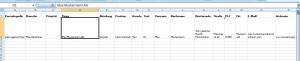 Exceliste 1 Datenverwaltung Juli 2013